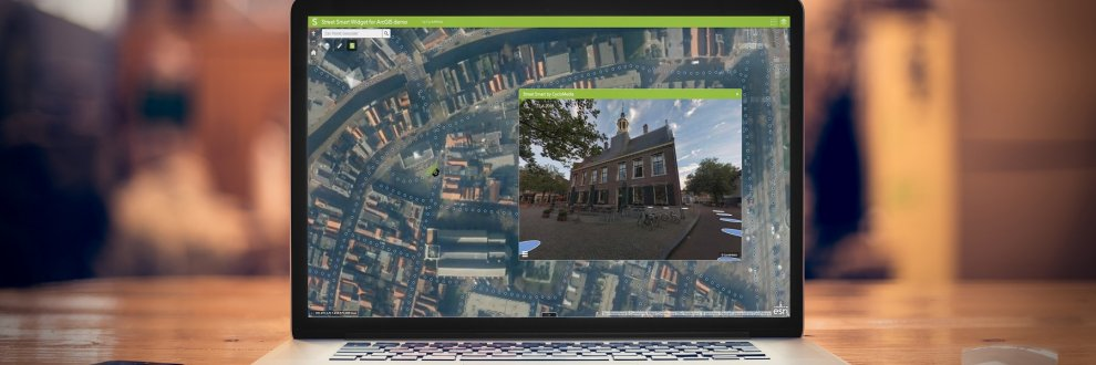 Street Smart for ArcGIS